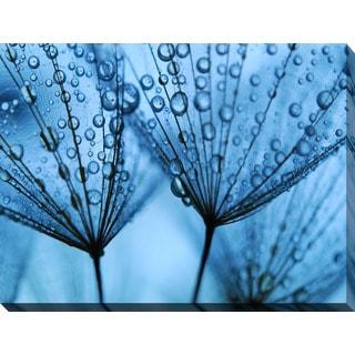 """Soft Dandelion Seeds"" Giclee Print Canvas Wall Art"
