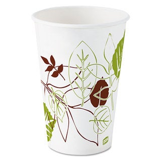 Dixie Pathways Polycoated Paper Cold Cups 16oz 1200/Carton