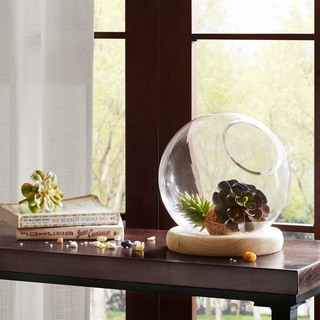 Madison Park Amory Clear Bubble Terrarium with Wood Base-Medium