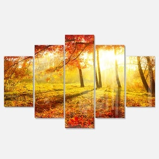 Designart 'Yellow Red Fall Trees and Leaves' Landscape Artwork Glossy Metal Wall Art