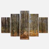 Designart 'Dense Fall Forest Panorama' Modern Forest Metal Wall Art