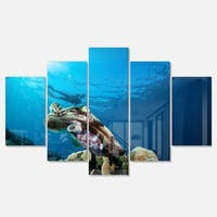 Designart 'Broadclub Cuttlefish Underwater' Large Seashore Glossy Metal Wall Art