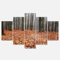 Designart 'Enchanted and Magical Fall Forest' Modern Forest Glossy Metal Wall Art