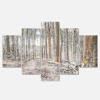 Designart 'Dense Forest in the Winter Photography' Modern Forest Glossy Metal Wall Art