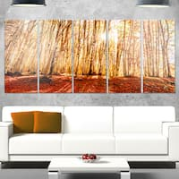 Designart 'Bright Sun over Thick Fall Forest' Modern Forest Glossy Metal Wall Art