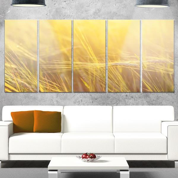Designart 'Wheat Field Close-up at Sunset' Large Landscape Glossy Metal Wall Art