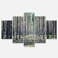 Designart 'Forest Road in Thick Woods' Modern Forest Glossy Metal Wall Art