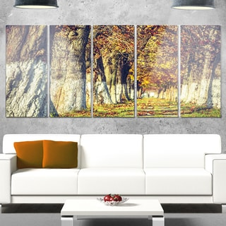 Designart 'Colorful and Serene Autumn Forest' Modern Forest Glossy Metal Wall Art