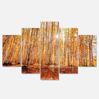 Designart 'Colorful Red Forest at Sunset' Modern Forest Glossy Metal Wall Art