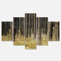 Designart 'Dark Fall Forest with Green Grass' Modern Forest Glossy Metal Wall Art