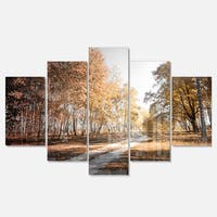 Designart 'Straight Road in Fall Birch Grove' Modern Forest Glossy Metal Wall Art