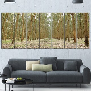 Designart 'Rubber Trees Row in Thailand' Modern Forest Glossy Metal Wall Art