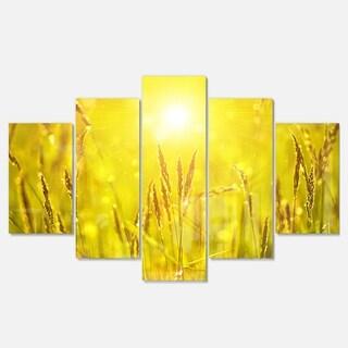 Designart 'Yellow Grass Flower at Sunset' Landscape Artwork Glossy Metal Wall Art
