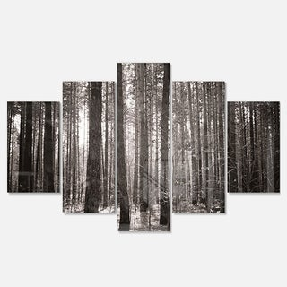 Designart 'Beautiful Misty Forest in the Autumn' Large Forest Glossy Metal Wall Art