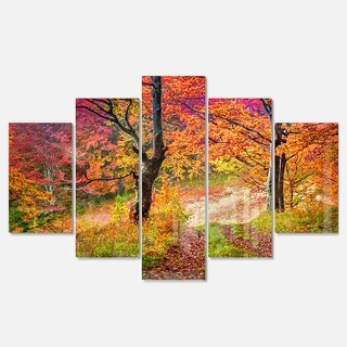 Designart 'Bright Colorful Fall Trees in Forest' Large Landscape Art Glossy Metal Wall Art