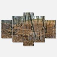 Designart 'Woods in Fall Forest Panorama' Large Forest Glossy Metal Wall Art