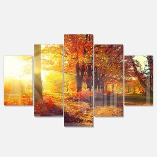 Designart 'Autumnal Trees in Sunrays' Large Landscape Art Glossy Metal Wall Art (2 options available)