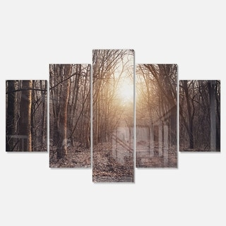 Designart 'Forest Pathway View at Sunset' Modern Forest Glossy Metal Wall Art