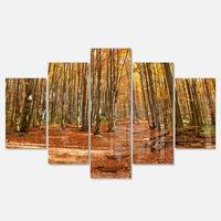 Designart 'Colorful Fall Forest with Fallen Leaves' Modern Forest Glossy Metal Wall Art