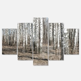 Designart 'Beautiful Dense Birch Forest View' Modern Forest Glossy Metal Wall Art