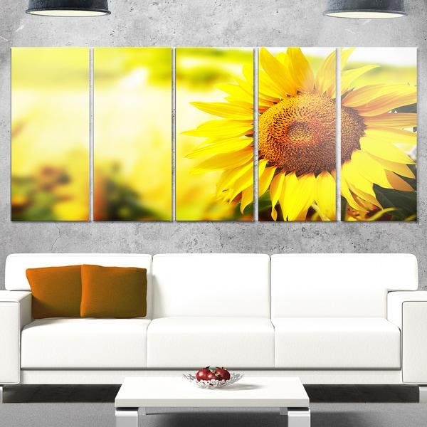 Designart \'Beautiful Tuscany Sunflower\' Flower Glossy Metal Wall Art ...