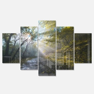 Designart 'Road in Autumn Forest at Sunset' Large Landscape Art Glossy Metal Wall Art