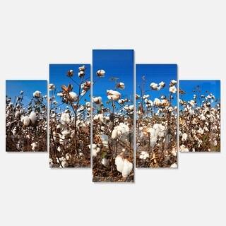 Designart 'Blooming Alabama Cotton Field' Large Landscape Glossy Metal Wall Art