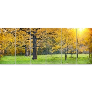 Designart 'Sunny Park with Oak Panorama' Large Landscape Glossy Metal Wall Art