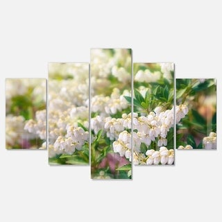 Designart 'Beautiful Blooming White Flowers' Modern Floral Metal Wall Art