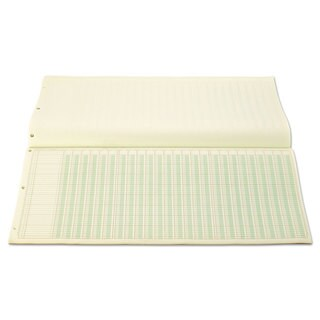 Wilson Jones Accounting Pad 25 Six-Unit Columns 11 x 24 1/4 50-Sheet Pad