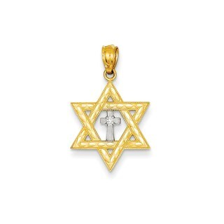 14k Yellow Gold Diamond Accent Star of David Cross Charm