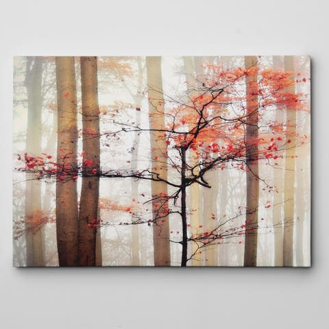 'Orange Awakening' Gallery-wrapped Canvas Wall Art