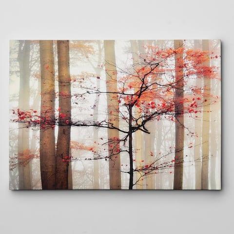 'Orange Awakening' Gallery-wrapped Canvas Wall Art