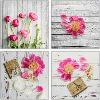 Pink Petals Quadriptych