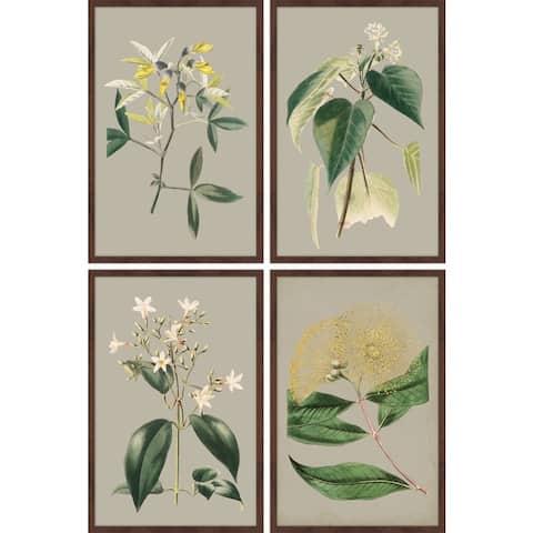 Marmont Hill - Handmade Green Botanicals Quadriptych