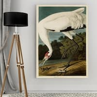 Wexford Home Audubon 'Hooping Crane' Giclee Canvas Wall Art