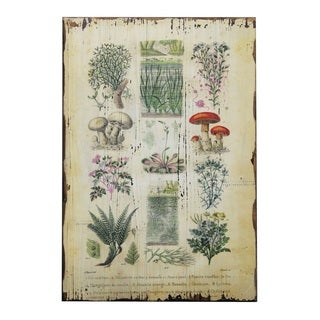 Jeco Botanical Wall Plaque