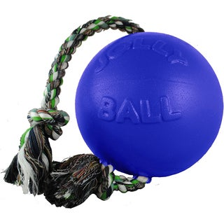 Romp-N-Roll Dog Toy