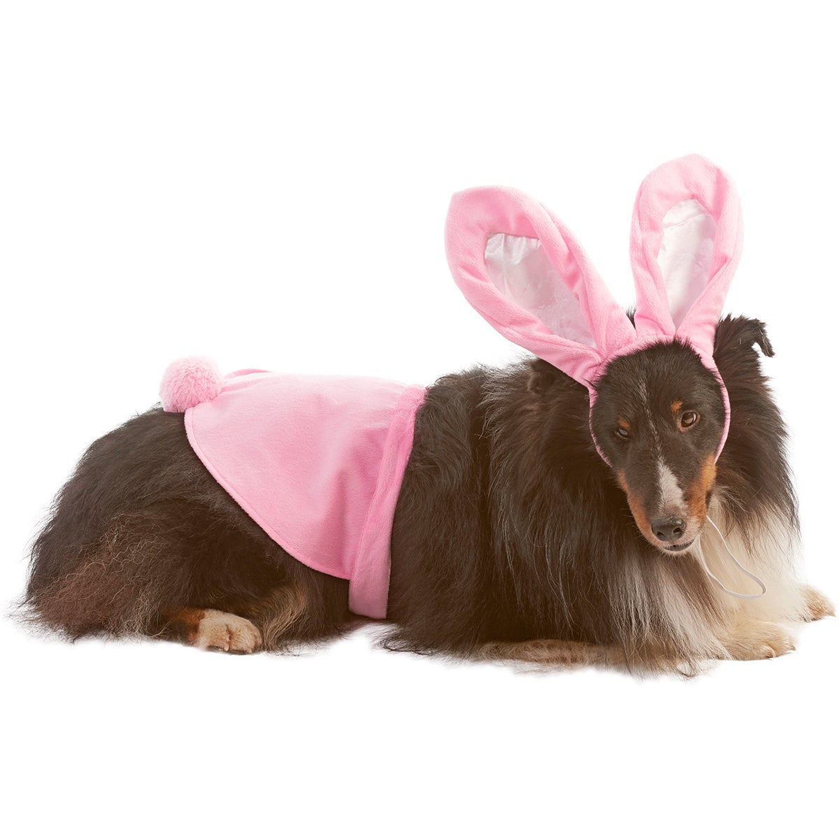 Bunny Dog Costume (Extra Small/Small), Multi