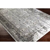 Hadley Distressed Traditional Area Rug (2' x 3')