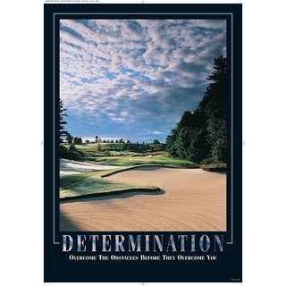 SECO Stewart Superior 'Determination' Framed Motivational Poster