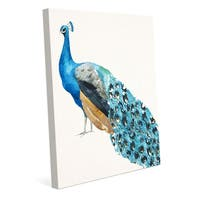 'Peacock on Paper' Canvas Wall Art