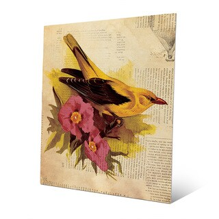 'Goldfinch With Fuschia Flowers' Wall Art on Metal