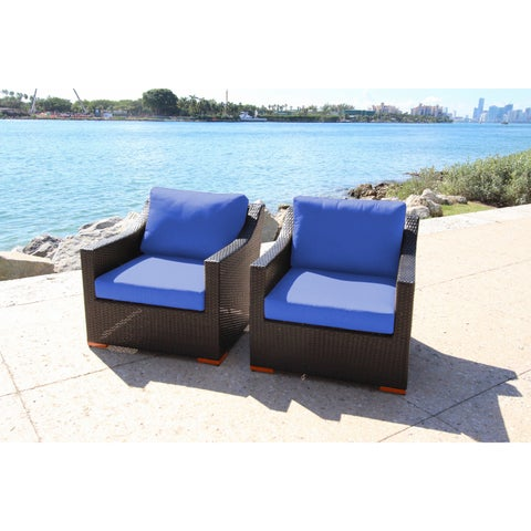 Anne Deep Seating Club Chairs set with Sunbrella Fabric (Set of 2)