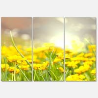 Designart 'Sunny Meadow with Yellow Flowers' Floral Glossy Metal Wall Art