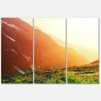 Designart 'Beautiful Meadow on Sunny Day' Oversized Landscape Glossy Metal Wall Art