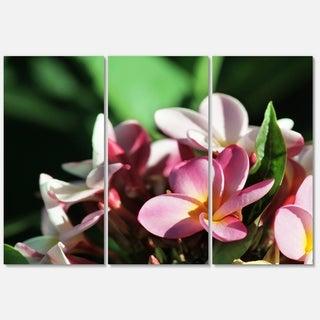 Designart 'Beautiful Little Pink White Flowers' Floral Glossy Metal Wall Art