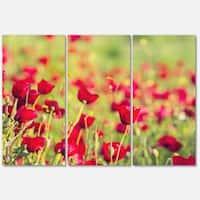 Designart 'Beautiful Poppy Flowers Background' Large Flower Metal Wall Art