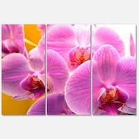 Designart 'Beautiful Purple Orchid Flowers' Large Flower Metal Wall Art