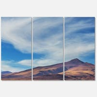 Designart 'Bright Argentina Mountain Region' African Landscape Glossy Metal Wall Art